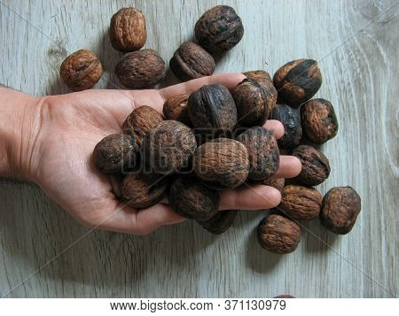 Male Hand Holding Of Organic Walnuts On Wooden Background. Close Up. Unpeeled Walnut. Vegetarian Foo