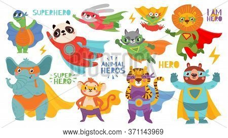 Hero Animals Wearing Costume. Super Animal Kids With Capes And Masks. Cute Lion, Tiger And Panda, Ra