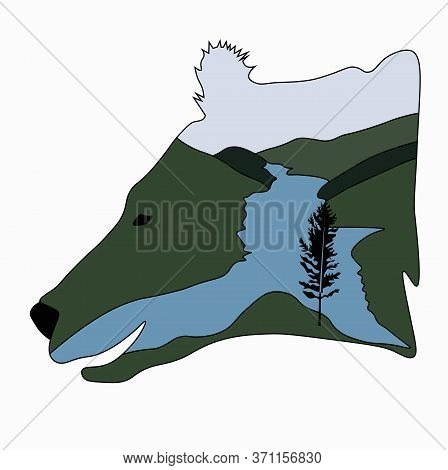 Vector Stock Illustration Of A Bear. The Head Of The Predator. Forest River Journey. Template For T-