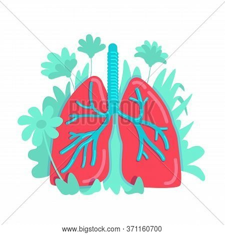 Anatomical Lung Flat Concept Vector Illustration. Cardiovascular Disease Prevention. Respiratory Sys