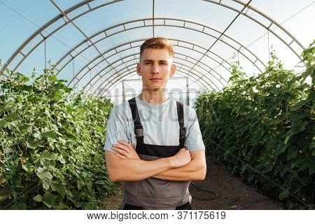 Portrait Of A Young Male Farmer In Overalls In A Greenhouse