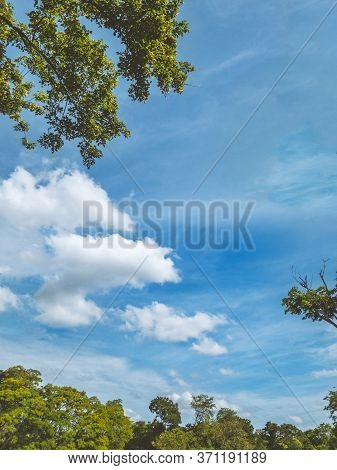 Vertical Photos Of Blue Sky