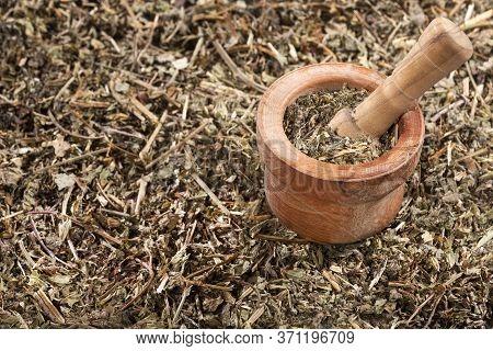Phyllanthus Niruri - Stone Chanca. Wood Mortar