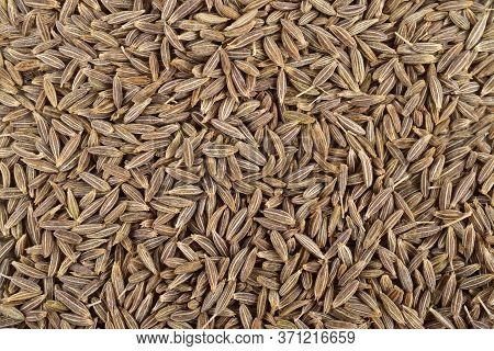 Top View Of Cumin Seeds, Cumin Seeds Background, Jeera