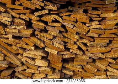 Wooden Texture Woodpile Yellow Tree In The Sunlight