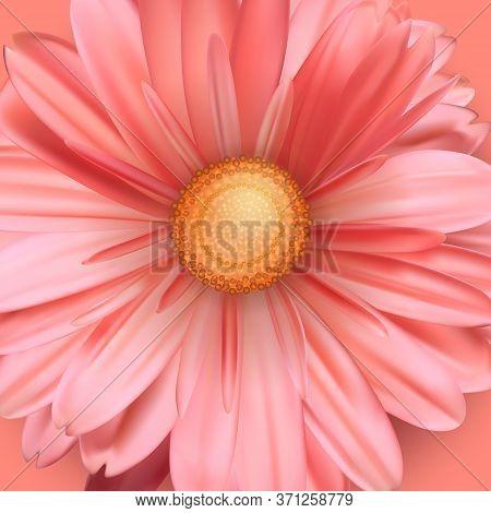 Blossoming Bud Of Flower Close Up. Pink Flower Bud. Vector 3d Illustration.