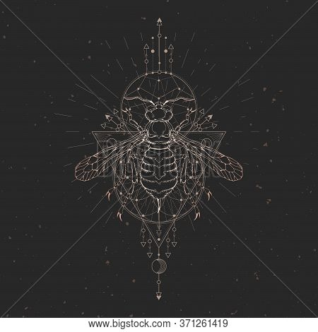 Vector Illustration With Hand Drawn Wasp And Sacred Geometric Symbol On Black Vintage Background. Ab