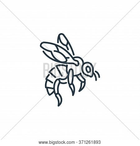 Bee Vector Icon. Bee Editable Stroke. Bee Linear Symbol For Use On Web And Mobile Apps, Logo, Print