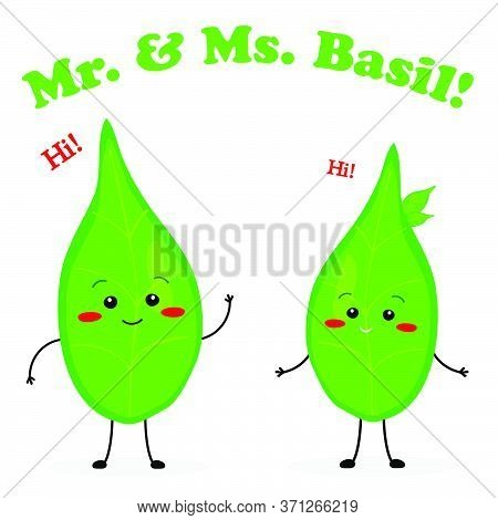 Mister And Missis Basil Cute Characters Vector Illustration Mascot