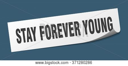 Stay Forever Young Sticker. Stay Forever Young Square Sign. Stay Forever Young. Peeler