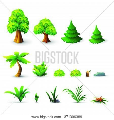 Large Collection Of Trees And Shrubs Isolated On A White Background. Pine Trees, Deciduous Trees, Pa