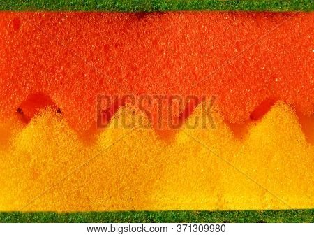 Orange And Yellow Sponges With A Green Surface And Jagged Edges