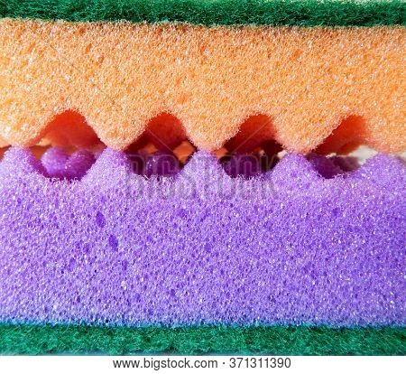 Orange And Violet Sponges With A Green Surface And Jagged Edges