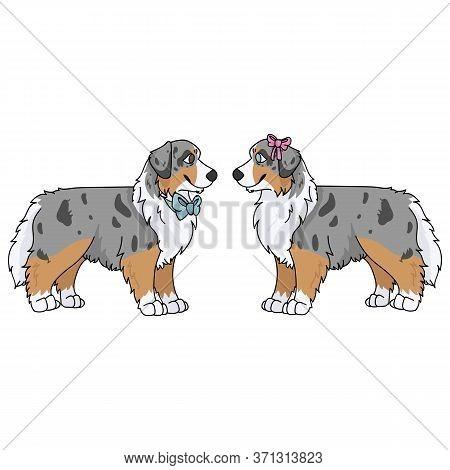 Cute Cartoon Australian Shepherd Boy And Girl Vector Clipart. Pedigree Kennel Doggie Breed For Dog L