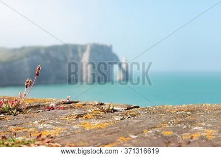 Picturesque Panoramic Landscape On The Cliffs Of Etretat. Normandy, France. Sunny Summer Day, Atlant