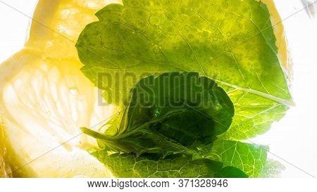 Macro Image Of Fresh Mint Leaves Floating In Cocktail Or Cold Lemonade