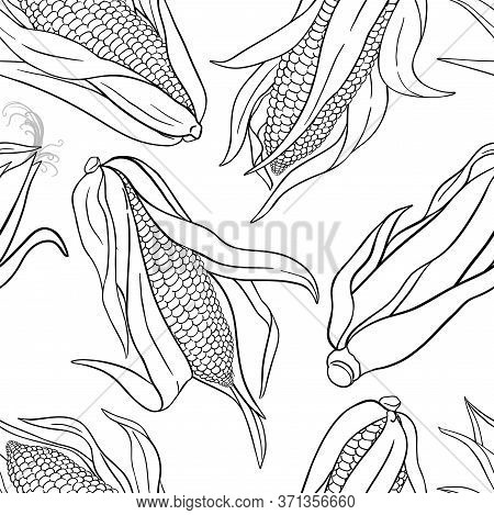 Corn Seeds Vector Pattern On White Background
