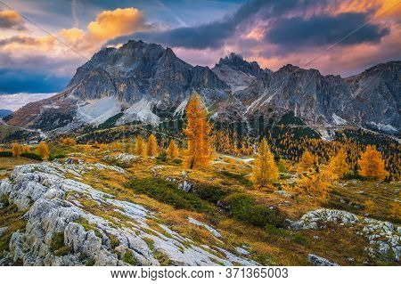 Picturesque Mountain Autumn Landscape With Yellow Redwoods And Spectacular Mountain Ridges, Falzareg