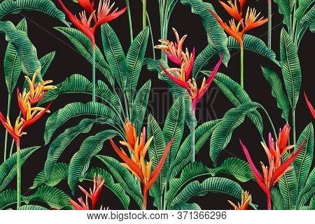 Watercolor Painting Bird Of Paradise Blooming Flowers,colorful Seamless Pattern Dark Background.wate