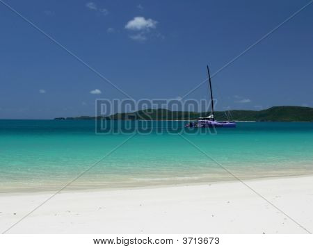 Anchored In Paradise