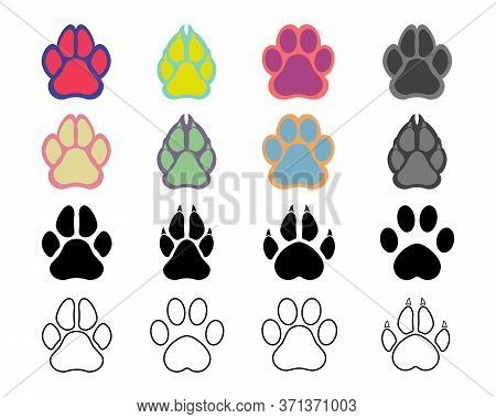 Footprints Of Animals. Imprint Of A Tiger's, Trace Of The Cat. Paw Of An Animal, Canine Lion, Traces