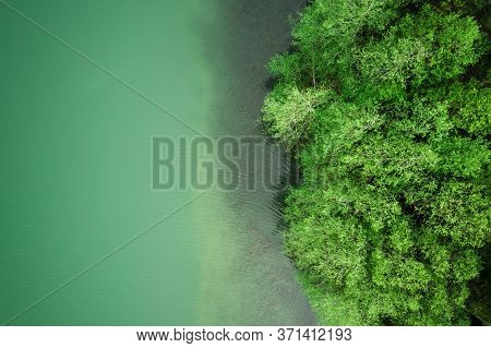 Green Forest At The Lake View From Above. Green Trees By The Lakeside In Summer Day Aerial Drone Vie
