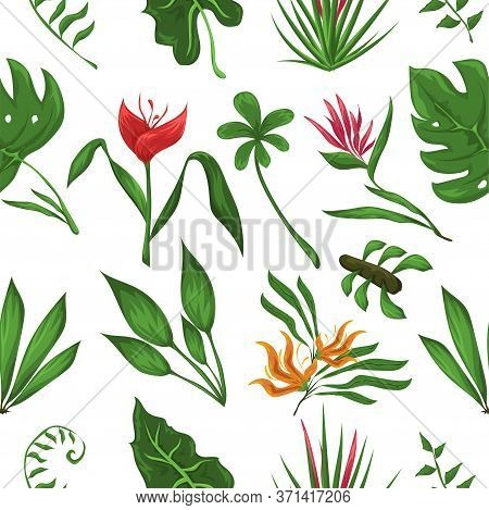 Jungle Leaves And Flowers Vector Pattern. Forest Nature Plants Vector Pattern. Beautifull Jungle Lea