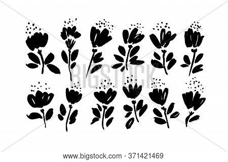 Spring Flowers Hand Drawn Vector Set. Black Brush Flower Silhouettes. Ink Drawing Wild Plants, Herbs