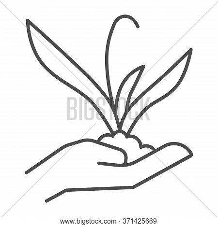 Plant Sprout In Hand Thin Line Icon, Gardening Concept, Flower Plant In Hand Sign On White Backgroun