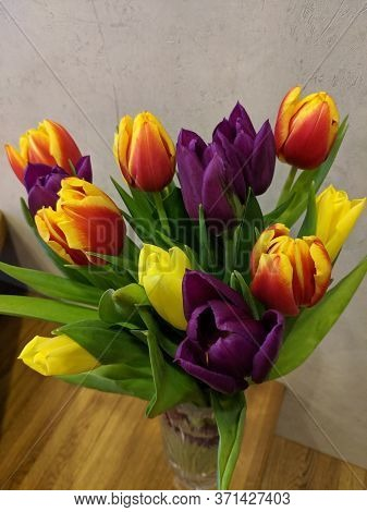 Beautiful Tulips In Bouquet In A Vase, Close Up Of Tulips In A Vase .