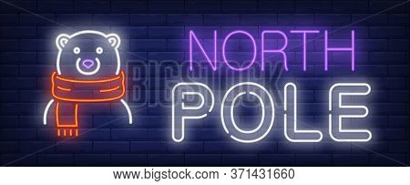 North Pole Neon Text With Bear In Scarf. Winter And Christmas Advertisement Design. Night Bright Neo