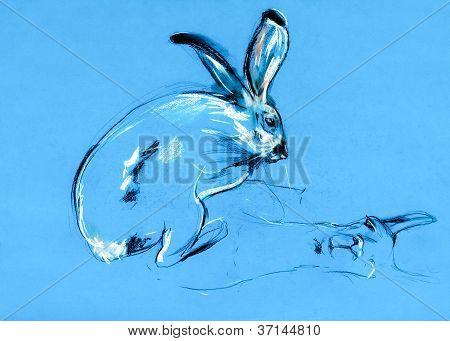 Rabbit And Llama Painting