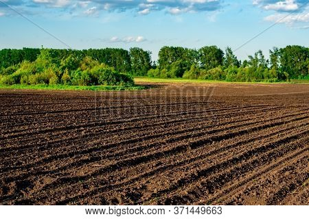 Agricultural Landscape, Arable Crop Field. Arable Land Is The Land Under Temporary Agricultural