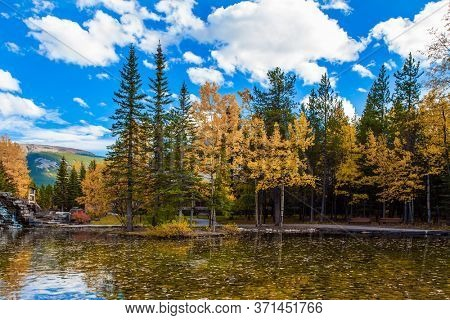 Shallow lake with yellow leaves. The valley of Kananaskis mountain park. Lush autumn in the Canadian Rockies. The concept of active, ecological and photo tourism