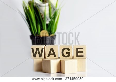 Text Wage Is Written On Wooden Building Blocks On White Background. Business Concept.