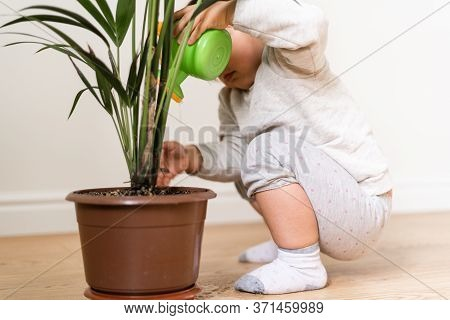 Toddler Child Watering Home Plant. Conscious Eco Friendly Education.