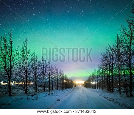 Northern Lights Aurora Borealis Over Frozen Trees And Snow Covered Road In Winter Of Iceland, Europe