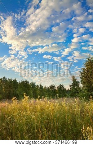 Amazing Summer Rural Landscape With Sunrise And Forest . Scenery Spring Scene View