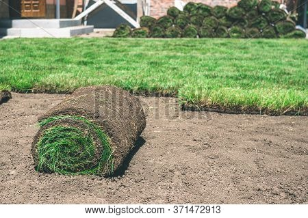 A Roll Of Fresh Green Grass Lies Near The Lawn On The Ground. Delivery And Laying Of Finished Lawn R