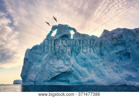 Greenland Ilulissat Glaciers At Ocean At Polar Night With Birds
