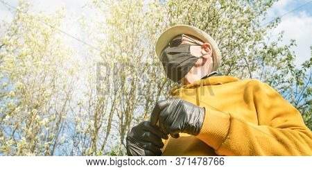Aged Gardener With Black Sterile Mask Gloves And In Yellow Hoodie Wanders In Local Garden With Bloss
