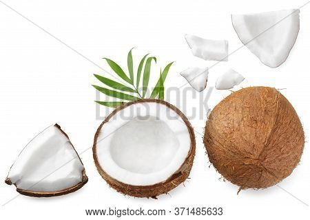 Coconut With Green Leaves Isolated On White Background. Top View