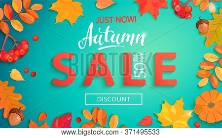 Autumn Sale Banner In Fall Leaves Frame.big Discounts Promo With Colorful Leaf, Rowan Berries, Acorn