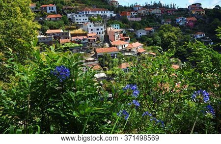 Madeira Hillside Village View From Levada Walk With Agapanthus Flowers.