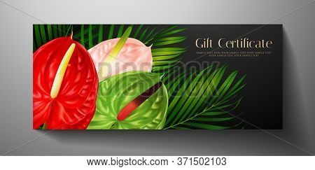 Gift Card With Tropical Exotic Realistic Asian Flower - Anthurium Andraeanum (flamingo Flower) And G
