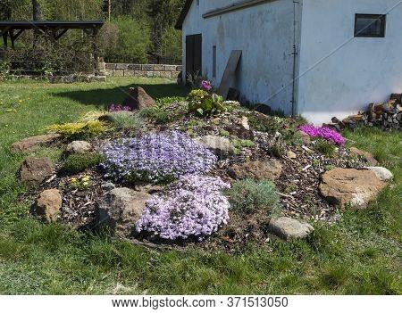 Spring Garden With Rock Garden In Full Bloom With Pink Phlox, Armeria Maritima, Sea Thrift, Bergenia