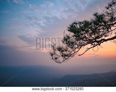 Beautiful Sunset And Silhouette Tree On Yeabmek Cliff On Phu Kradueng Mountain National Park In Loei