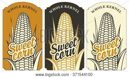 Sweet Corn Labels In Retro Style. A Set Of Vector Labels Or Banners For A Whole Sweet Corn Kernel Wi
