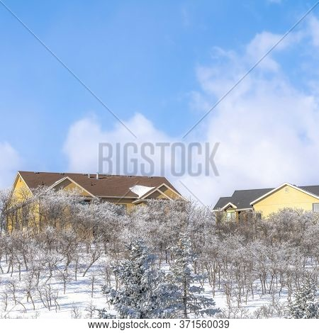 Square Pristine Terrain Of Wasatch Mountains With Homes Amidst Fresh Snow In Winter