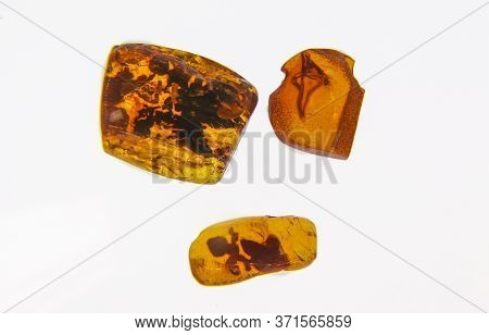 Fragments Of Amber Close-up. Natural Amber With Pieces Of Antiquities Inside.